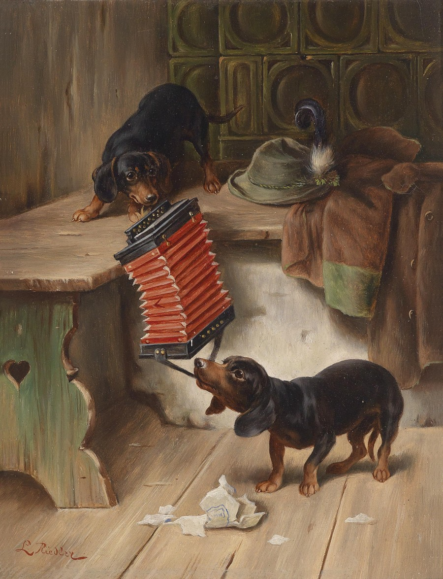 Dachshund playing with accordion