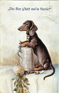 Dachshund painting with turnip