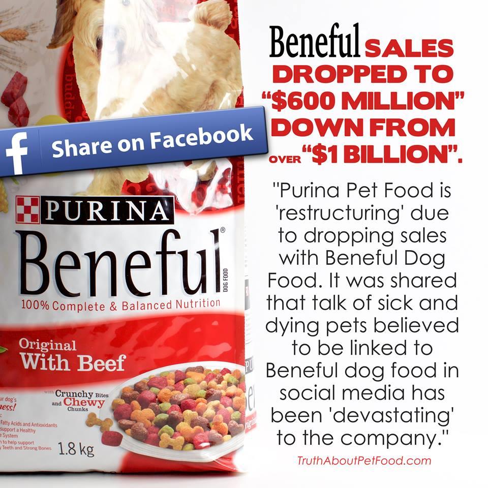 Avoid Beneful Purina Brand