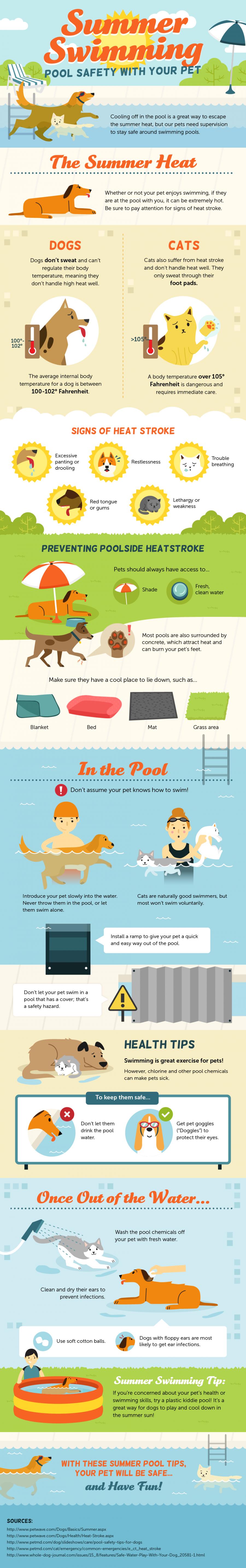 Pet Pool Safety