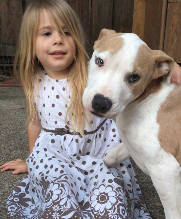 Cute puppy with little girl